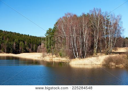 Autumnal view of pond, Bohemian and Moravian highland, Czech Republic