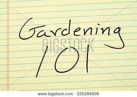 The Words Gardening 101 On A Yellow Legal Pad