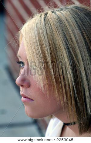 Elusive Profile