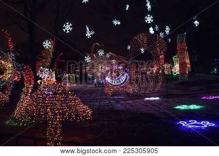 Alice in Wonderland Themed Light Display at Zoo Lights, Lincoln Park Zoo, Chicago, IL December 13th, 2017