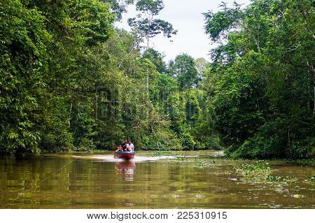 October 2013. Malaysia. Borneo.The boat sails along the Kinabatangan River surrounded by tropical forests, Sabah, Borneo. Malaysia.