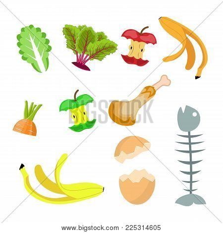 Organic waste, food compost collection Banana, egg , fish bone and apple stump. Vector illustration in flat style