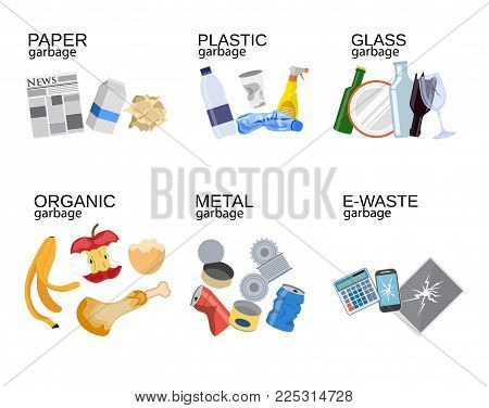 Garbage sorting food waste, glass, metal and paper, plastic electronic, organic. Vector illustration in flat style
