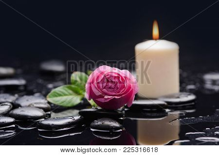 Still life with pink rose petals with candle and therapy stones