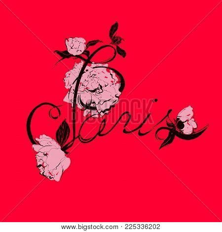 Vector handwritten text. Paris calligraphy and peony flowers illustration.