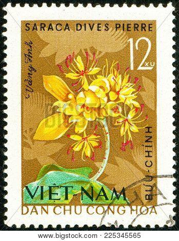 Ukraine - circa 2018: A postage stamp printed in Vietnam show Saraca Dives or saraca Dives Pierre. Series: Four - seasons flowers. Circa 1964.