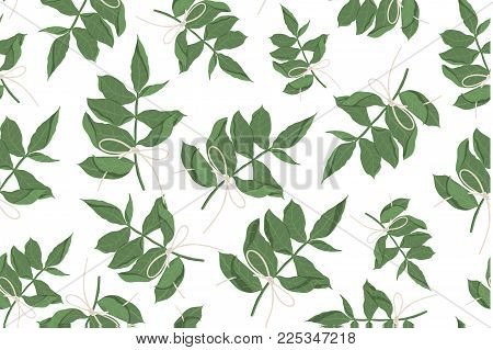 Seamless pattern of tree, foliage natural branches, green leaves. Vector fresh beauty rustic eco friendly background on white