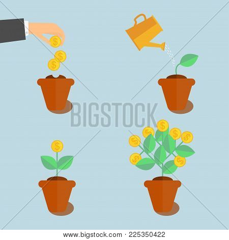 Growing money tree. Plant growing stages. Coin seed - vector