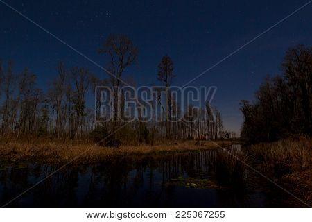 Okefenokee swamp of southern Georgia, USA at night with stars.