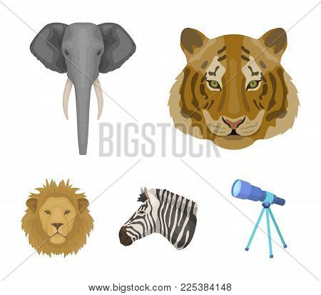 Tiger, Lion, Elephant, Zebra, Realistic Animals Set Collection Icons In Cartoon Style Vector Symbol