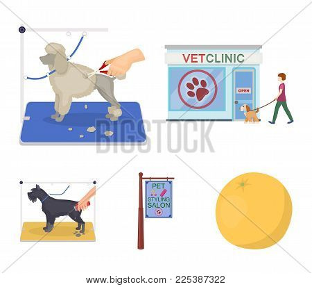 Visiting a vet clinic, a signboard of a stylish salon for a pet, a haircut of dogs. Vet clinic and pet, dog care set collection icons in cartoon style vector symbol stock illustration .