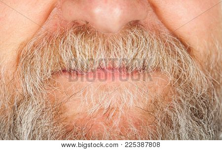 Close up picture of senior man's grey beard and mustache over lips