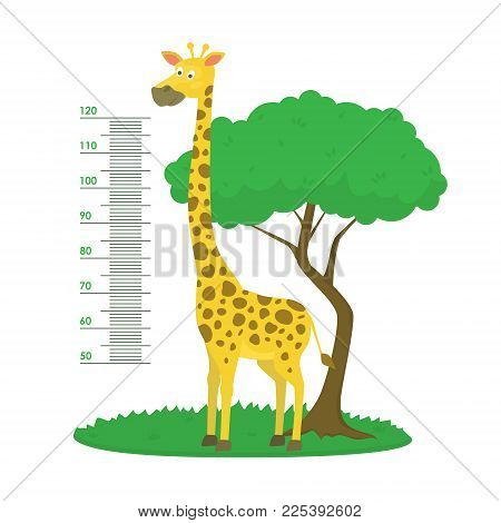 Cartoon Meter Wall with Giraffe and Tree Green Card Poster Height Sticker Concept Flat Design Style. Vector illustration