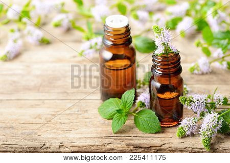 Purple Peppermint Flowers And Peppermint Essential Oil On The Wooden Board