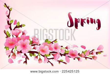 Realistic Sakura Japan Cherry Branch With Blooming Flowers With Text Spring, Fresh Pink Design Flyin