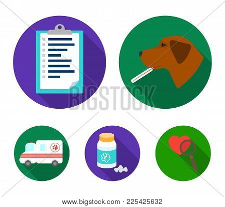Hospital, Veterinarian, Dog, Thermometer .vet Clinic Set Collection Icons In Flat Style Vector Symbo
