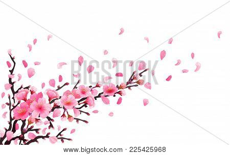Realistic Sakura Japan Cherry Branch With Blooming Flowers. Spring Fresh Pink Design. Flying Downwin
