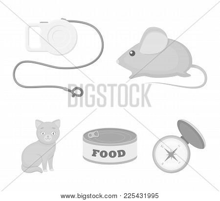 Mouse, Pet Leash, Pet Food, Kitten. Cat Set Collection Icons In Monochrome Style Vector Symbol Stock