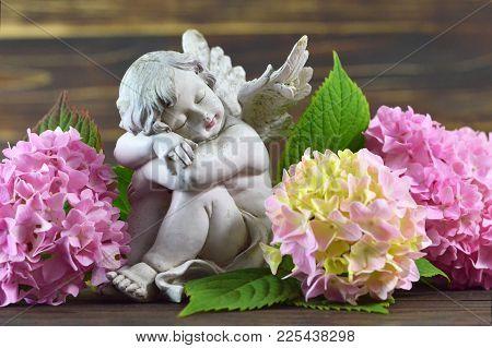 Little Guardian Angel And Pink Hydrangea Flowers