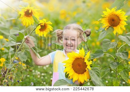 Child In Sunflower Field. Kids With Sunflowers.