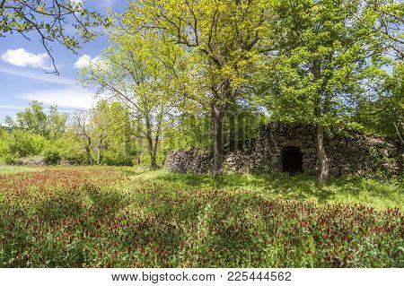 Parc De Pedra Tosca,park Pumice Stone,project By Rcr Arquitectes,volcanic Area La Garrotxa.les Prese