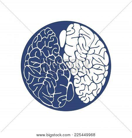 Sketch Ink Human Brain, Hand Drawn ,anatomical Illustration. Vector Illustration