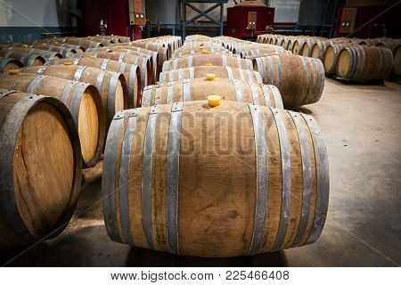 Wine Barrels In The Cellar Of The Winery