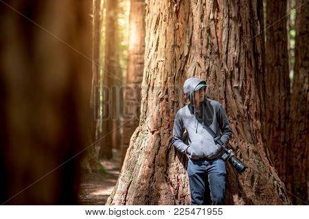Young Male Photographer Wearing Hoody Standing In Redwood Forest (whakarewarewa Forest) Near Rotorua