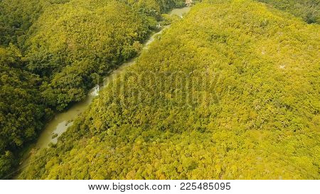 Aerial View, River In The Rainforest Among The Jungle Tropical Loboc River In The Rain Forest In Asi