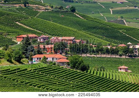 Small village among green vineyards in summer in Piedmont, Northern Italy.