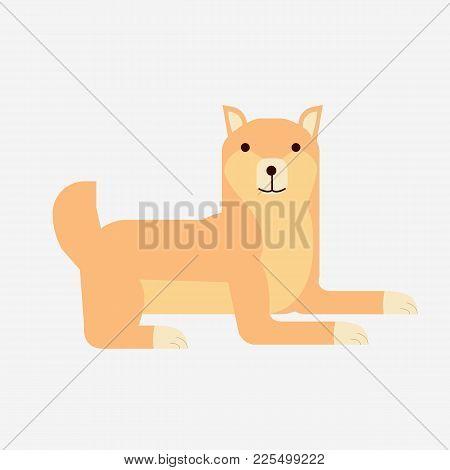 Cute Cartoon Japanese Shiba Inu Dog Vector.flat Shiba Inu Dog Portrait With Isolated Background