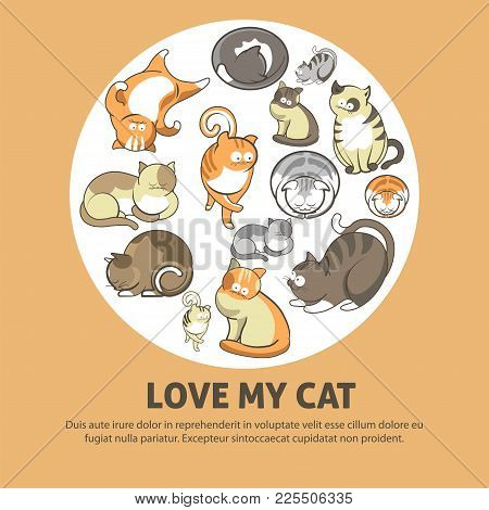 Love My Cat Promotional Poster With Cute Pets That Have Fluffy Fur Inside Circle Isolated Cartoon Fl