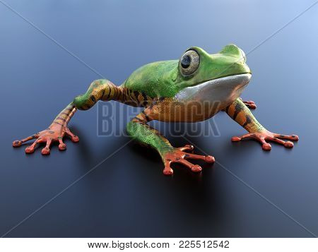 Realistic 3d Rendering Of A Green And Orange Colored Tree Frog Sitting On A Reflective Surface.