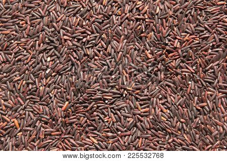 Close Up Of Riceberry Grain Brown Rice Background