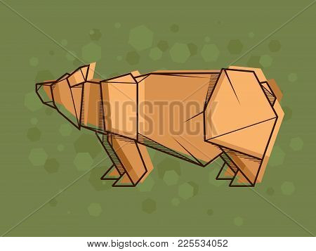 Vector Abstract Simple Illustration Drawing Outline Bear.
