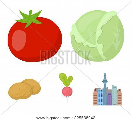 Cabbage White, Tomato Red, Rice, Potatoes. Vegetables Set Collection Icons In Cartoon Style Vector S