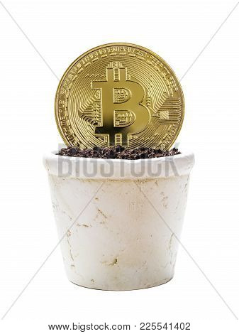 Symbolic Golden Coin Of Bitcoin Crypto Currency, New Digital Money In Cyber World, Is In White Ceram