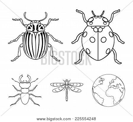 Insect, Bug, Beetle, Paw .insects Set Collection Icons In Outline Style Vector Symbol Stock Illustra