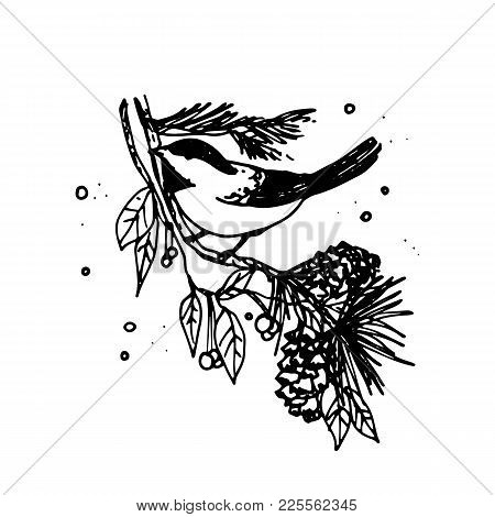 Illustration Of Artistic Christmas Doodle Icon. Bullfinch In On Fur-tree Branch. New Year Vintage De