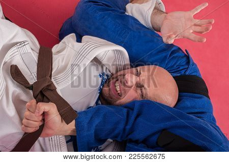Brazilian Jiu Jitsu Training. Parterre And Ground Lock Techniques