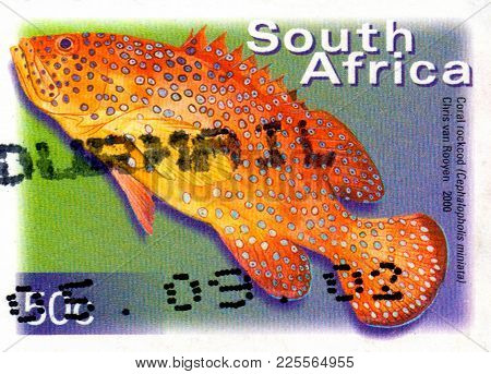Ukraine - Circa 2018: A Postage Stamp Printed In South Africa Show Fish Coral Hind Or Cephalopholis
