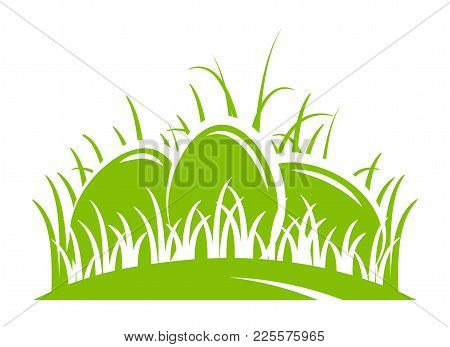 Vector Eggs In Grass Isolated On White Background