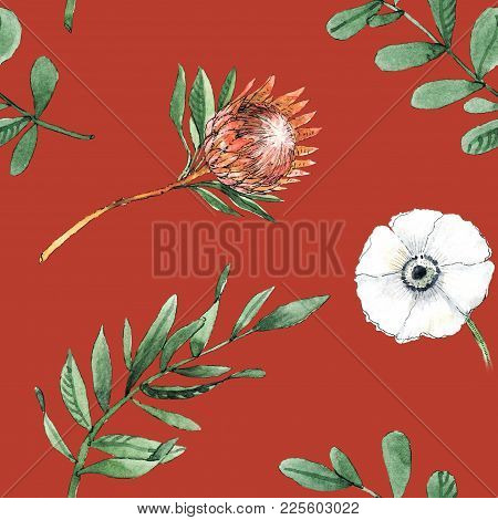 Watercolor Seamless Pattern With Protea Flowers, Anemone Flowers And Leaves Will Be Good For Gift Wr