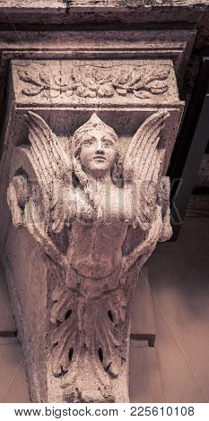 Female Mythical Winged Figure On A Wall In Siena Italy