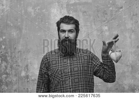 Serious Bearded Man, Caucasian Hipster, With Long Beard And Moustache In Plaid Shirt Holds Rosy Text