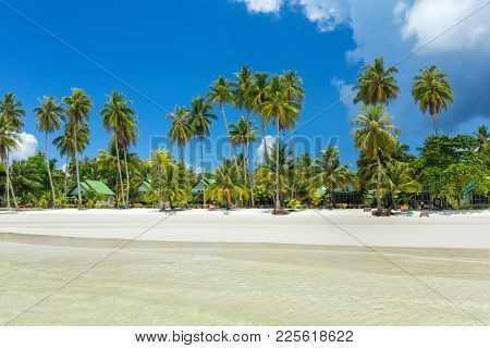 Palm trees on the perfect tropical white sand beach on Koh Kood island in Thailand