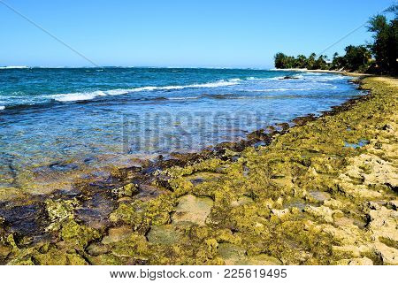 Waves Crashing Onto A Rugged Coast With Volcanic Lava Rocks Taken On Tide Pools At The North Shore I