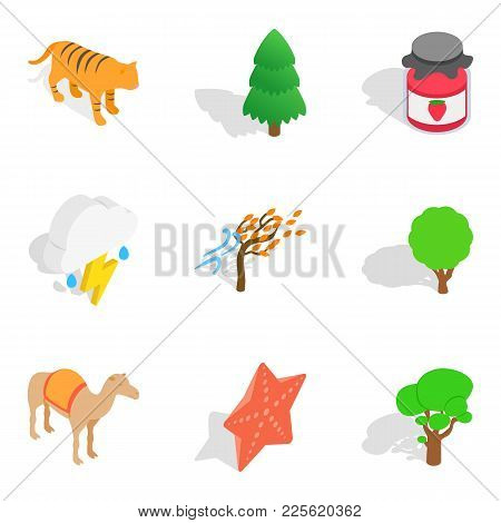 Forested Area Icons Set. Isometric Set Of 9 Forested Area Vector Icons For Web Isolated On White Bac