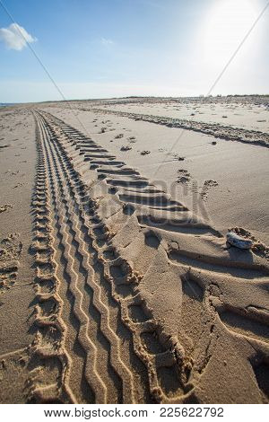 Beach Tractor Tire Track In Sand. Perspective And Vanishing Point. Tread Marks Left By Industrial Ve