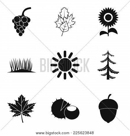 Natural Intervention Icons Set. Simple Set Of 9 Natural Intervention Vector Icons For Web Isolated O